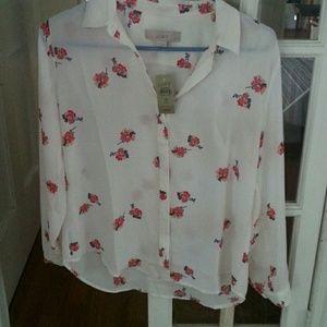 Lovely feminine blouse NWT
